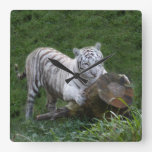 White tiger 015 clock