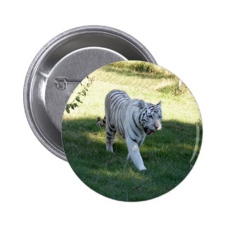 White tiger 016 pins