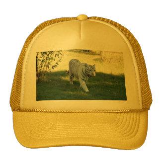 White tiger 016 trucker hat