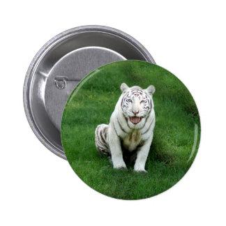 White tiger 018 pinback button