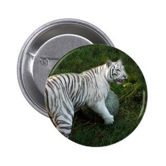 White tiger 019 button