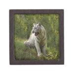 White tiger 020 premium gift box