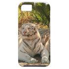 white-tiger-26.jpg iPhone SE/5/5s case