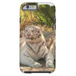 white-tiger-26.jpg tough iPhone 6 case