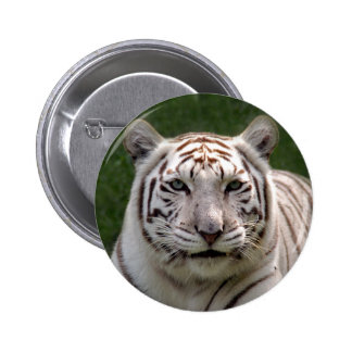 White Tiger 3949e Button