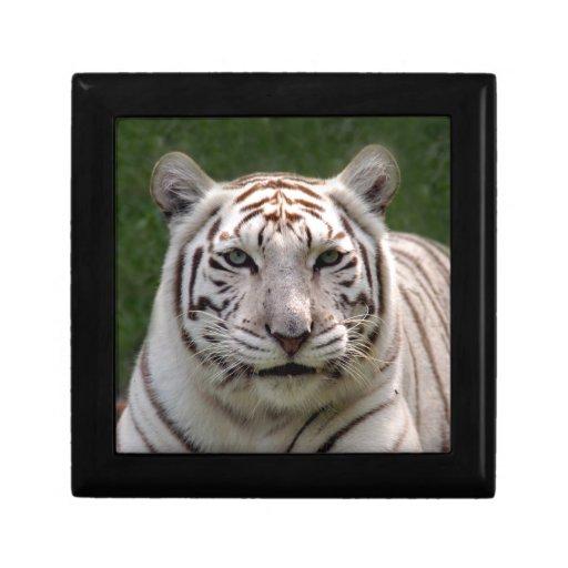 White Tiger_3949e Keepsake Box