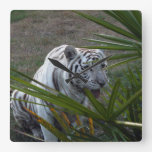 White Tiger 6168e Wallclock