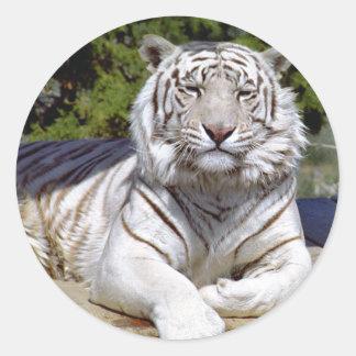 White Tiger 9 Stickers
