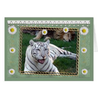 white-tiger-b-st-patricks-0076 tarjeta de felicitación