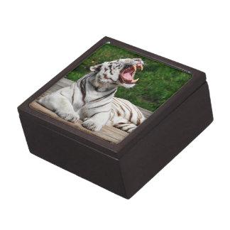 White Tiger, Bengal Tiger Gift Box