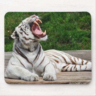 White Tiger, Bengal Tiger Mousepad