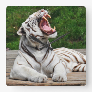White Tiger, Bengal Tiger Wall Clock