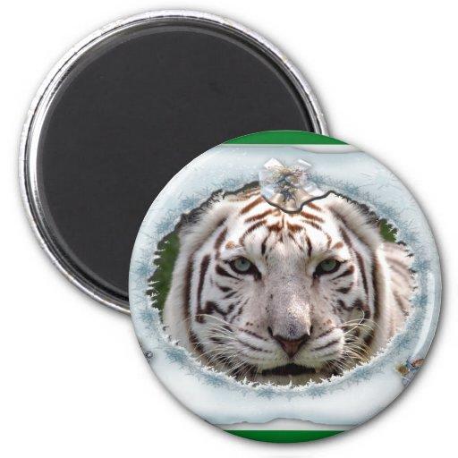 White Tiger-c-16 copy Fridge Magnet