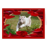 White Tiger Cards Holiday Cards