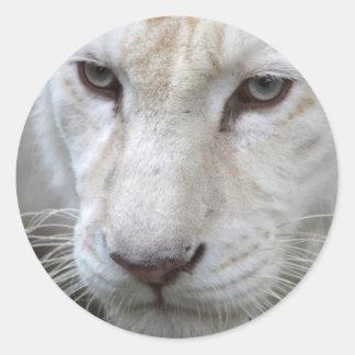 white tiger classic round sticker