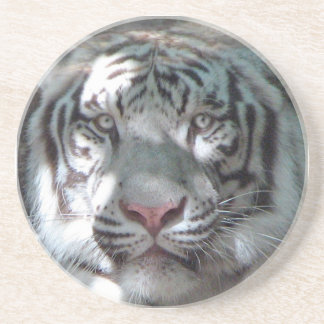 White Tiger Close Up Drink Coaster