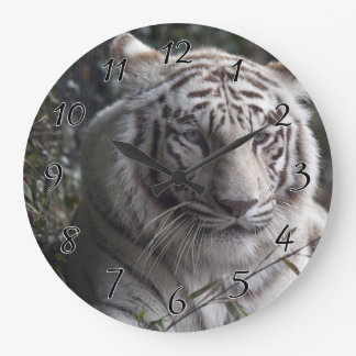 White Tiger Close-up Large Clock