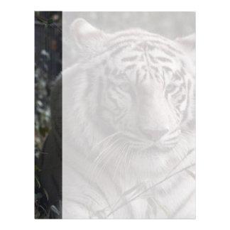 White Tiger Close-up Letterhead