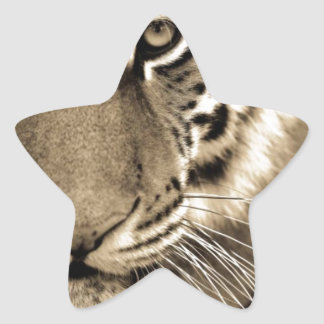 White Tiger Close Up Star Sticker