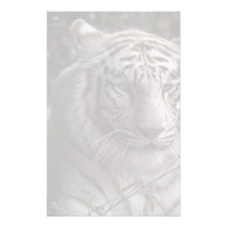 White Tiger Close-up Stationery