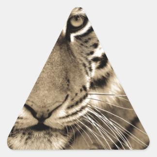 White Tiger Close Up Triangle Sticker
