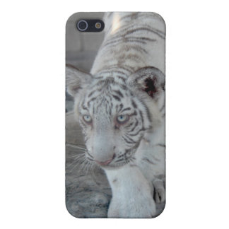 White Tiger cub 1 (仔 tora of white tiger) Case For iPhone SE/5/5s