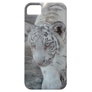 White Tiger cub 1 (仔 tora of white tiger) iPhone SE/5/5s Case