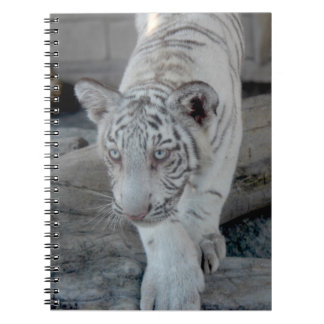 White Tiger cub 1 (仔 tora of white tiger) Spiral Notebook
