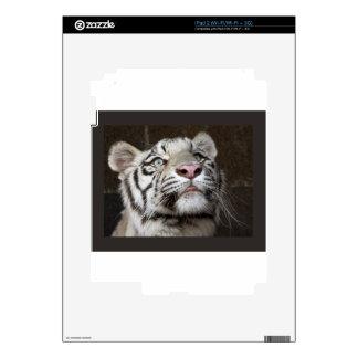 White Tiger Cub iPad 2 Skins
