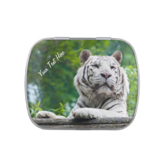 White Tiger custom tins & jars Jelly Belly Tin