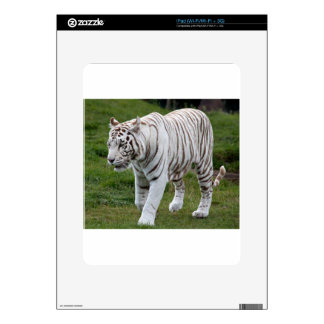White Tiger Decal For iPad