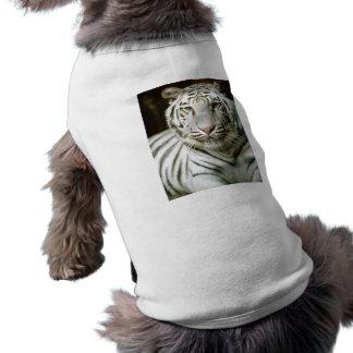 White Tiger Dog Clothes
