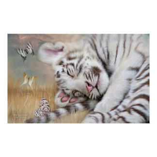 White Tiger Dreams Fine Art Poster/Print Poster