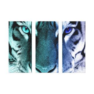 White Tiger Eyes Color Fade canvas