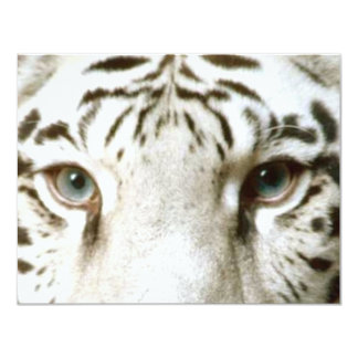 White Tiger Feng Shui Invitation ~ EZ2 Customize