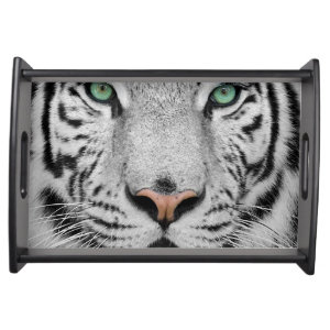 White Tiger Food Trays