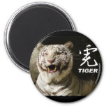 WHITE TIGER GROWLING WITH CHINESE CHARACTER REFRIGERATOR MAGNET