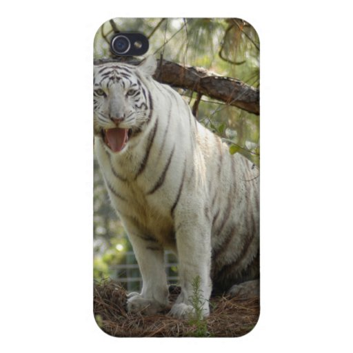 White Tiger i iPhone 4 Covers