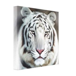 WHITE TIGER II CANVAS PRINT