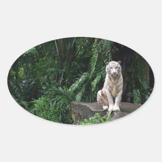 White Tiger in the Jungle Oval Sticker