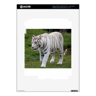 White Tiger iPad 3 Decal