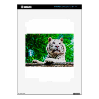 White Tiger iPad 3 Decals