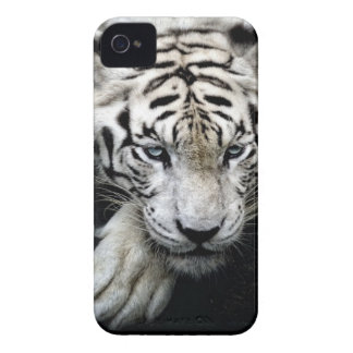 White Tiger iPhone 4 Case-Mate Case