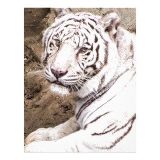 White Tiger Custom Letterhead