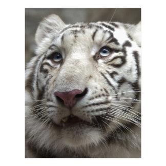 White Tiger Letterhead Design