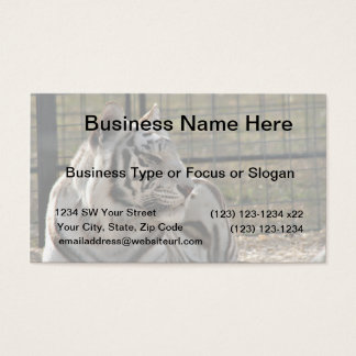 white tiger looking right animal image business card