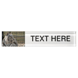 white tiger looking right animal image nameplate
