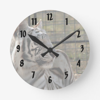white tiger looking right animal image round clock