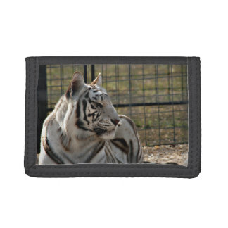 white tiger looking right animal image tri-fold wallet