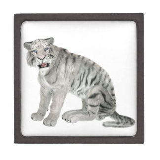 White Tiger Looking to the Front Jewelry Box